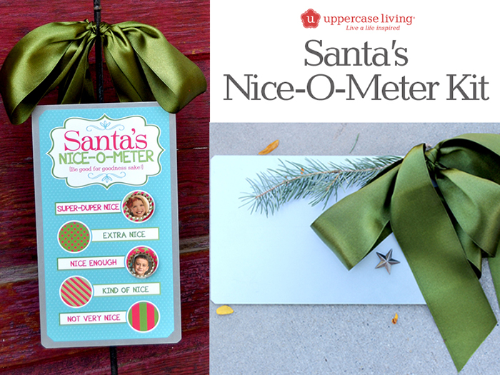 Santas Nice_O_Meter Kit